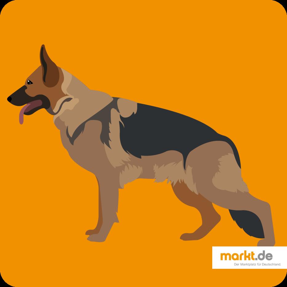 Grafik Deutscher Schäferhund