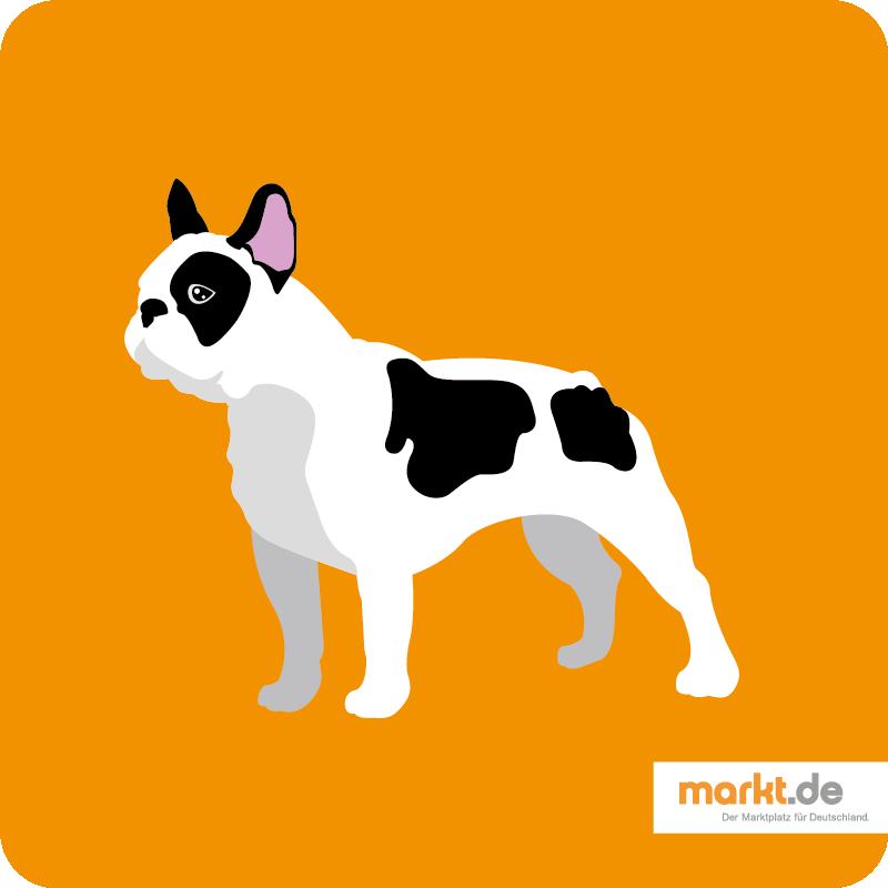 Grafik von Bulldogge