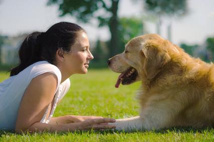 Bild von Frauchen mit Hund