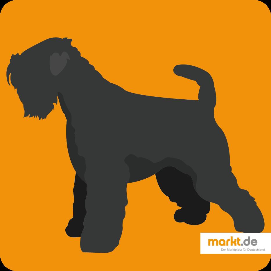 Grafik Scottish Terrier