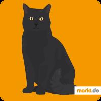 Grafik Katzenrassenübersicht Hauskatze