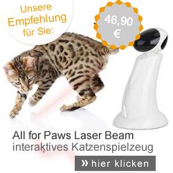 Katzenspielzeug interaktiv
