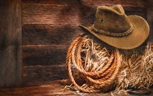 Bild Strohballen mit Lasso und Cowboyhut
