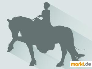 Bild elegante Reiterin auf einem Pferd