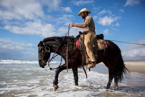 Bild Westernreiter auf einem Pferd im Wasser